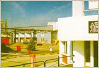 Фабрика филип моррис ижора открыта в феврале 2000
